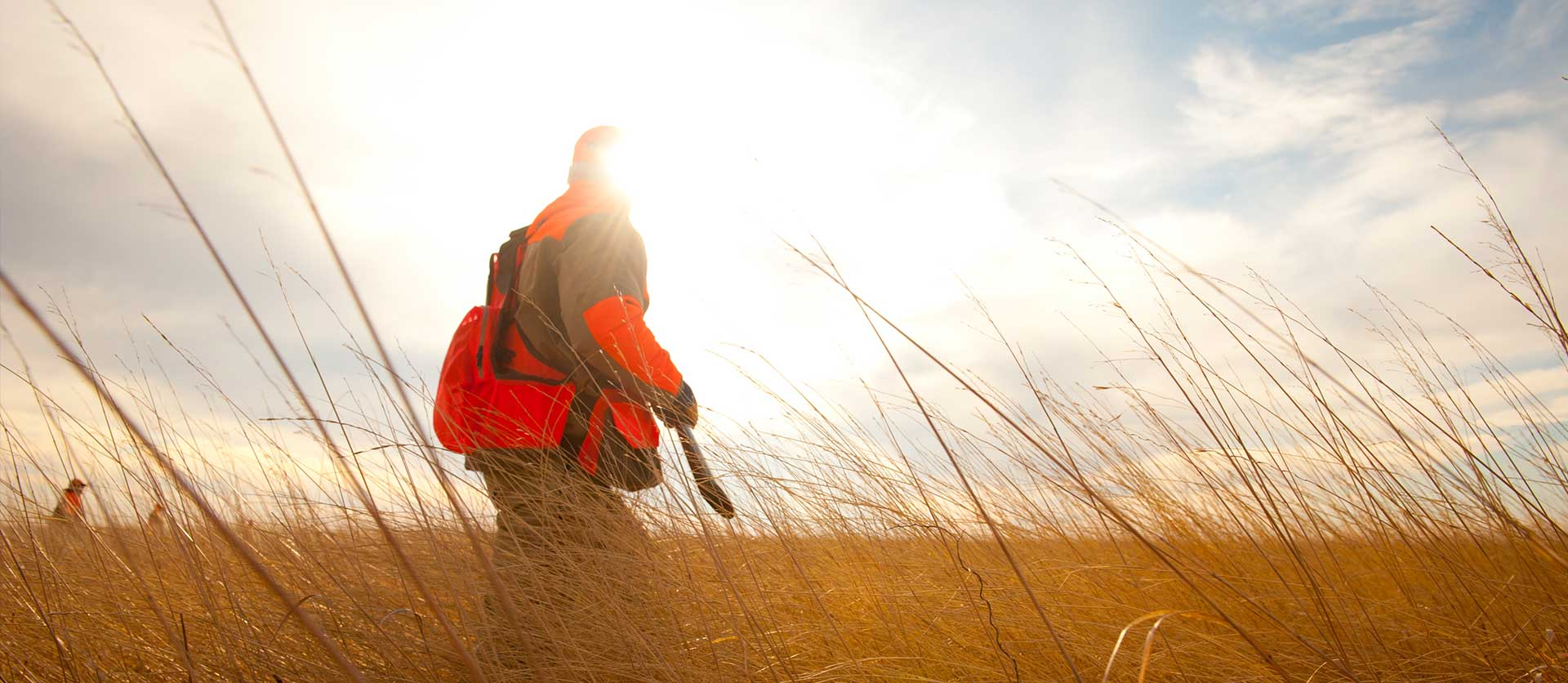 Pheasant Hunts in SD | Rooster Ridge Lodge