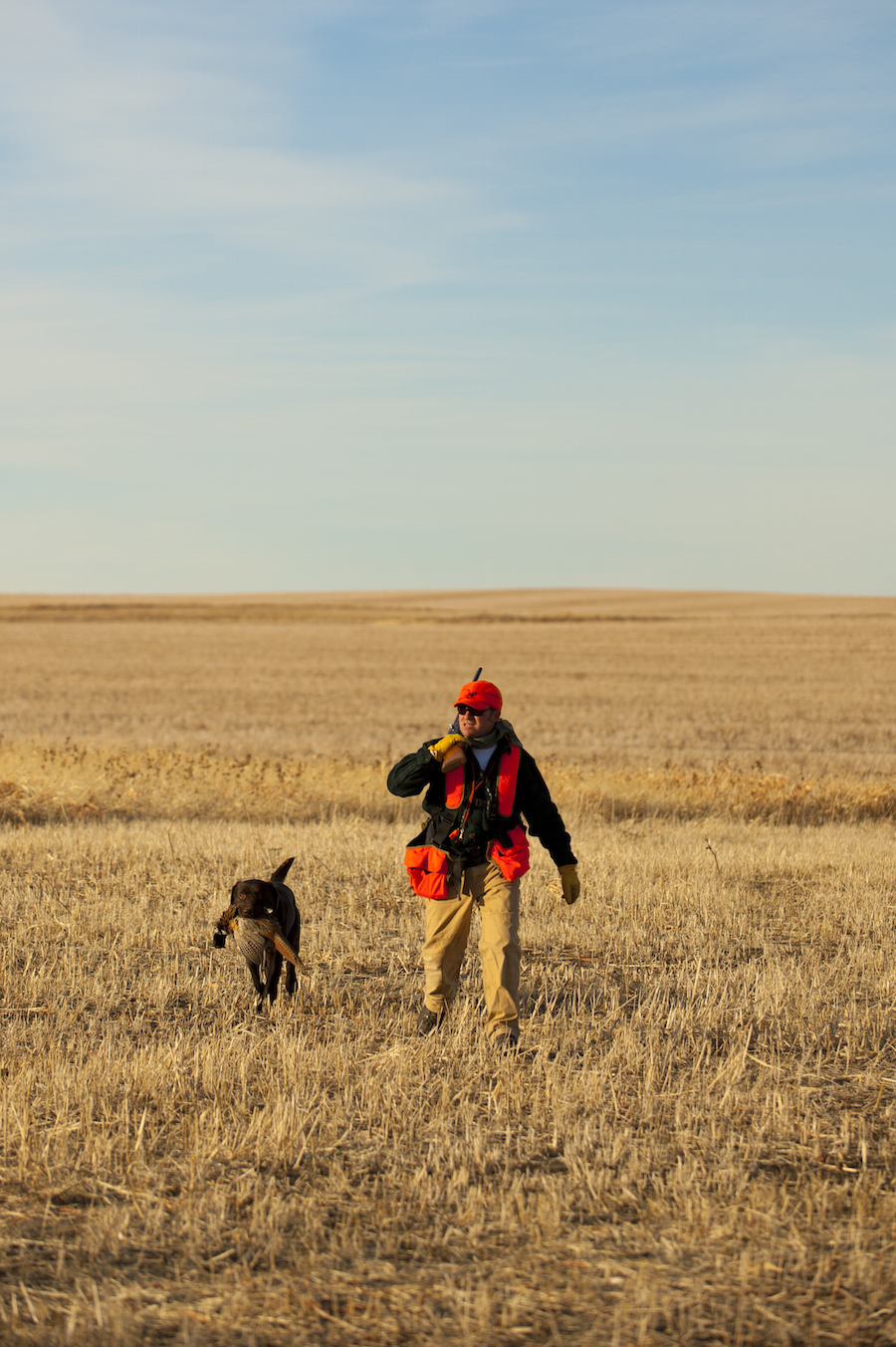 Affordable Pheasant Hunting Lodge South Dakota
