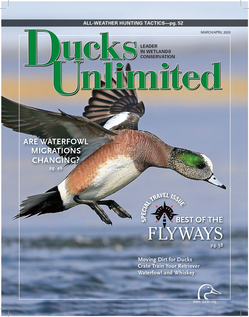 Ducks Unlimited cover photo
